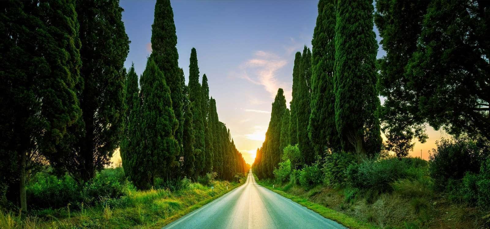 Appartamenti Vacanza Toscana Mare - Residence Le Corti del Sole