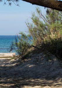 Residence Toscana Mare Costa degli Etruschi - Le Corti del Sole