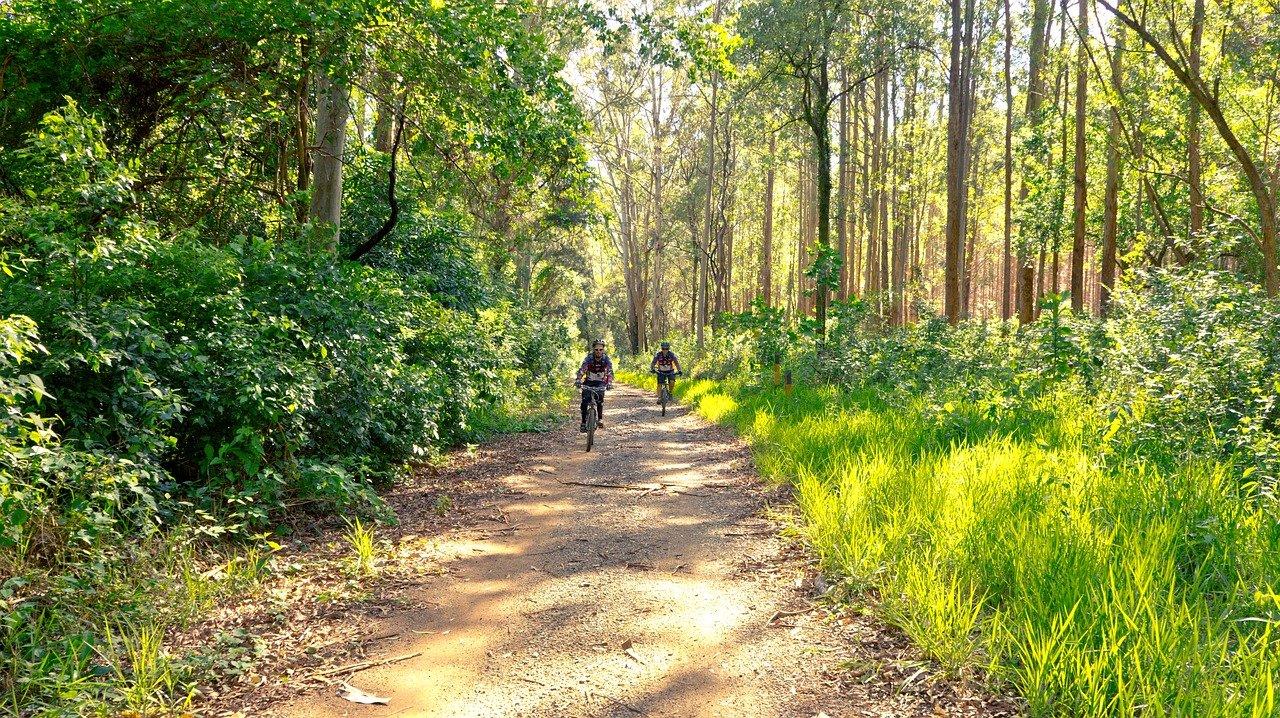 Vacanze in Bici in Toscana - Le Corti del Sole